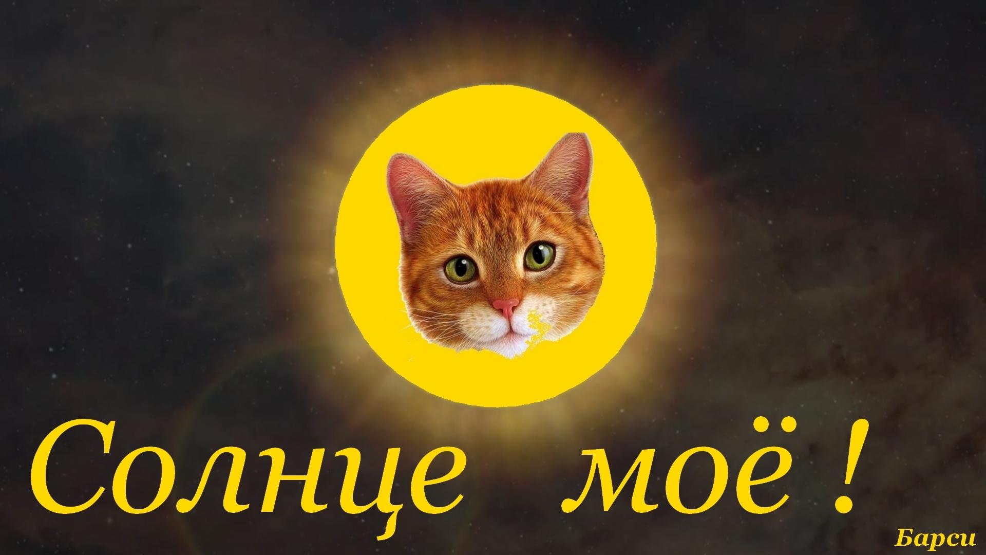 Доброго, картинки ты мое солнце